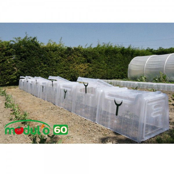 Mini Greenhouse Tunel Modulo 60